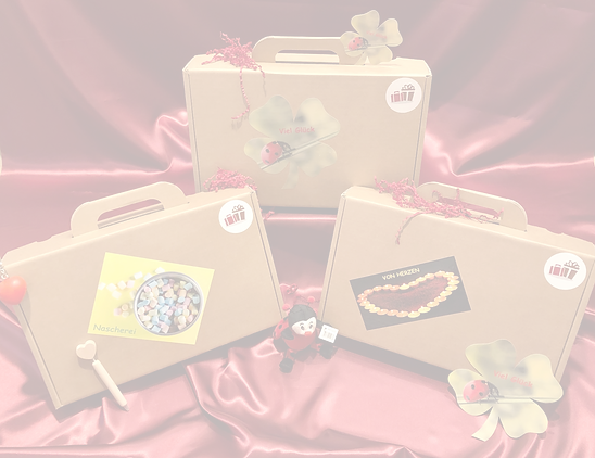 Valise cadeau, cadeaux pour chaque occasion, bonbons, du cœur, bonne chance, anniversaire, fête, décoration, cadeaux pour femmes, cadeaux pour hommes, cadeaux pour enfants