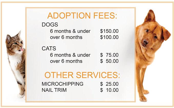 Adoption Fees Web (1).jpg