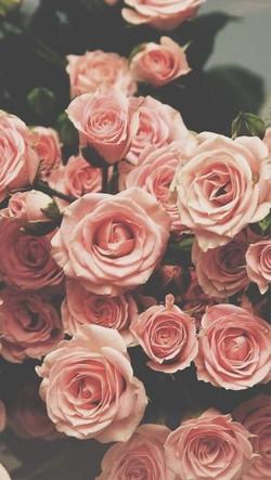 #roses #floral #arrangements #print #bac