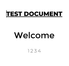 test 333
