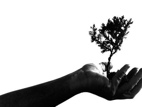 Purpose Unternehmen – Was ist das?