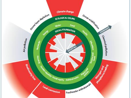 Ein gesundes Leben für alle innerhalb der planetaren Grenzen - Das Doughnut-Modell