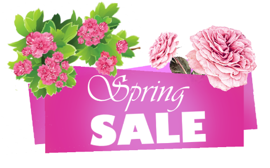 Spring sale png.png