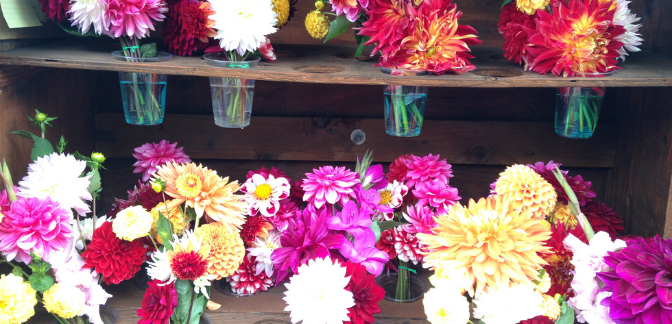 Roadside Flower Stands