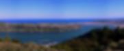 tours dunedin, scenic tours dunedin, pick up from port chalmers, cruise ship tours experience dunedin wildlife