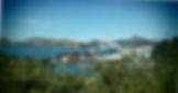 tours dunedin, Port Chalmers, Dunedin. See what to do in Dunedin and enjoy your dunedin tour