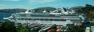 rental cars from port chalmers dunedin, cruise ship tours, dockside pick up and drop off