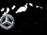 logo-emb74-annecy-cluses-mountain-sans-b