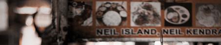 Arun Maruns Work Neil island India