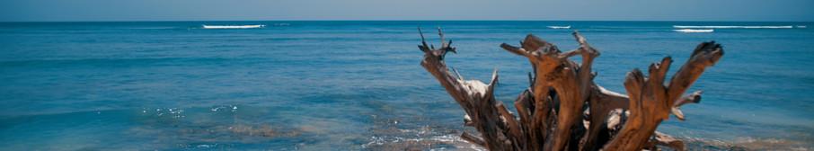 Andaman Islands Beach India