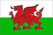 Welsh Flag.png