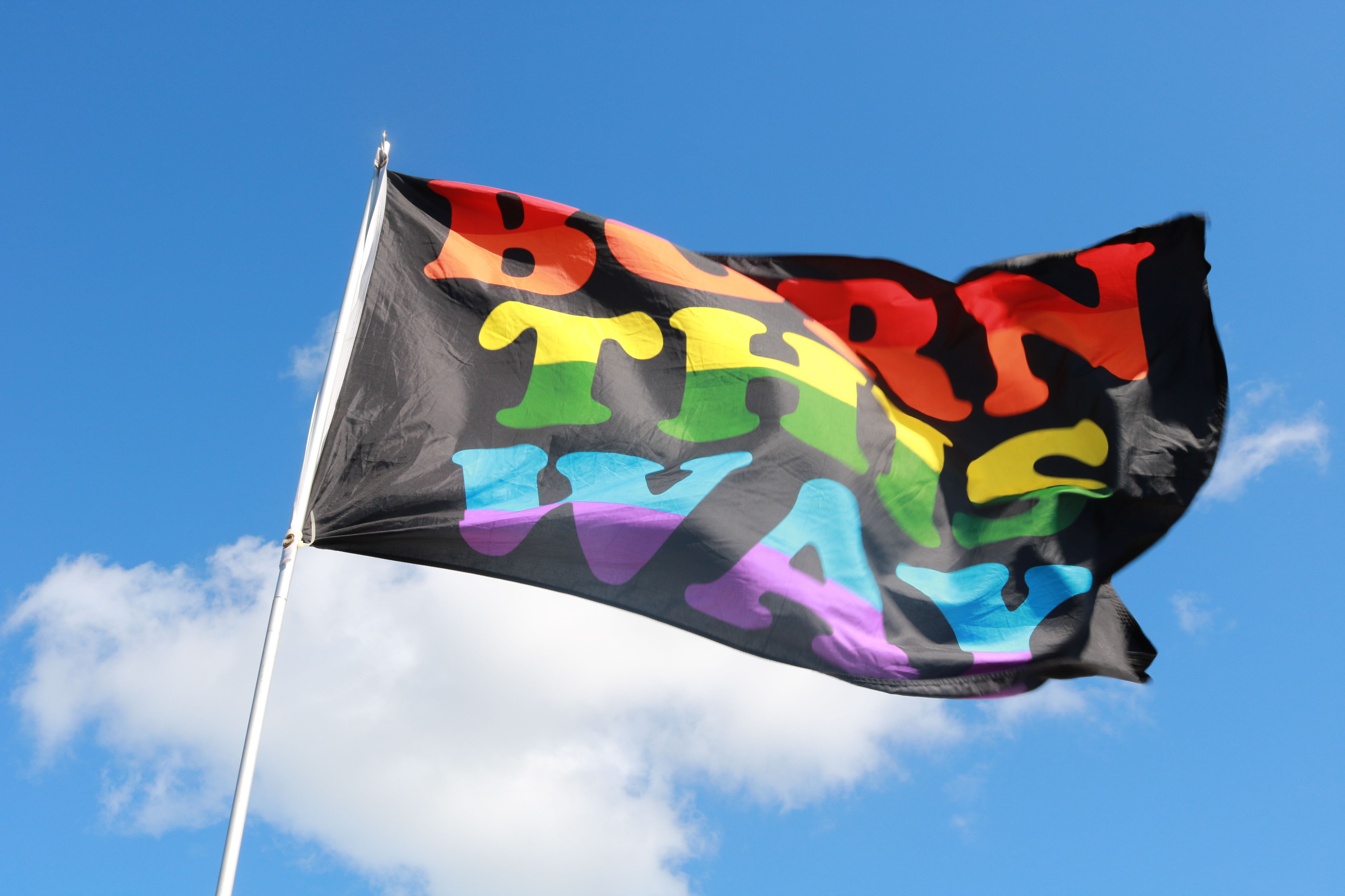 Born This Way flag