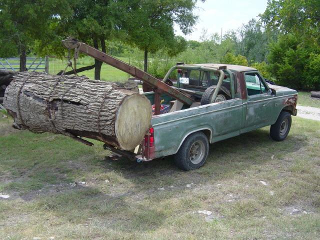 bur oak4317.jpg