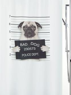 02012_Bad-Dog