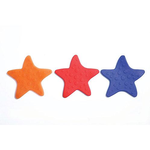 Starfish 00526