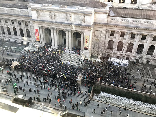 NYPL from the sky.jpeg