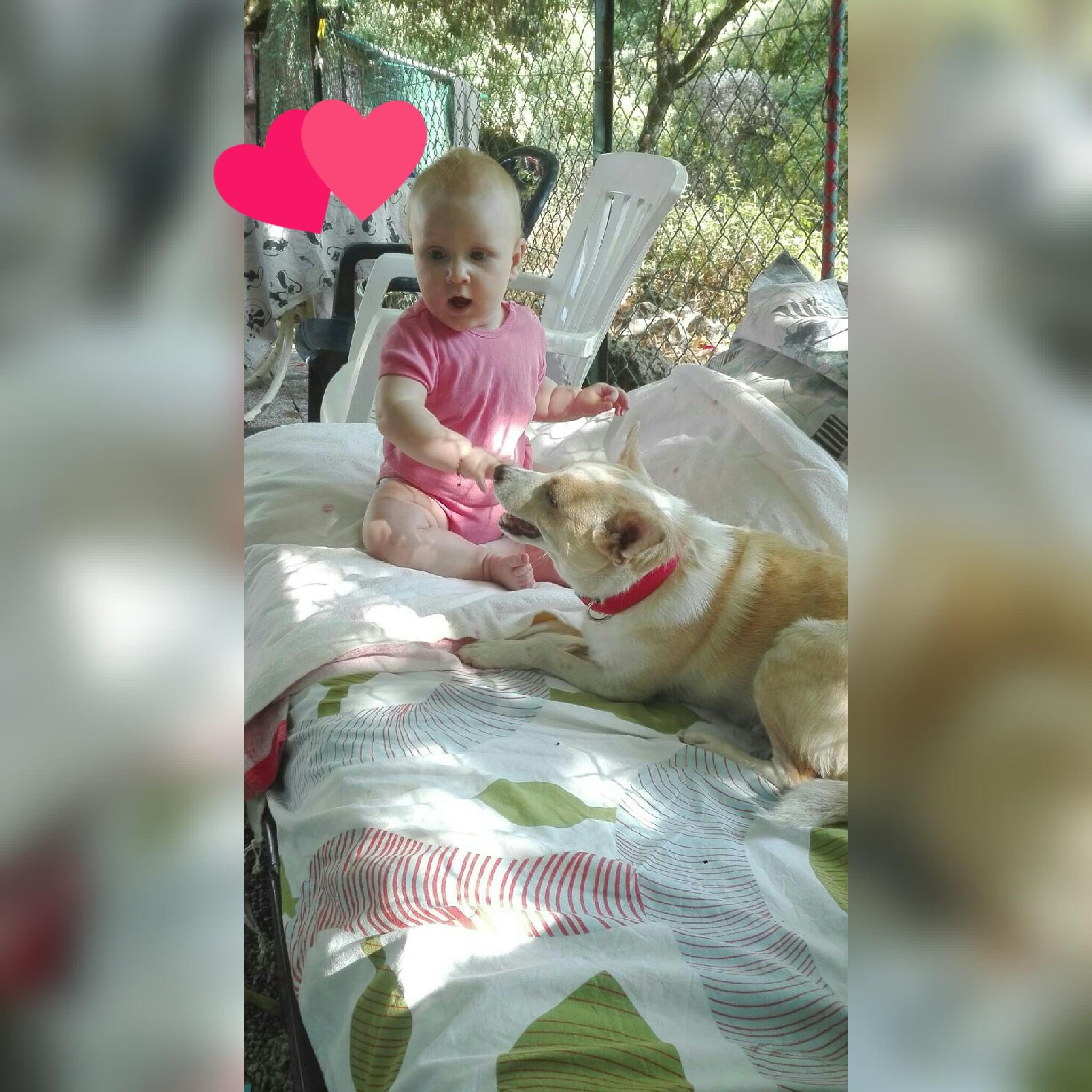 Die kleine Sofia ( 08-17)