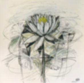 lotus.final.print.jpg