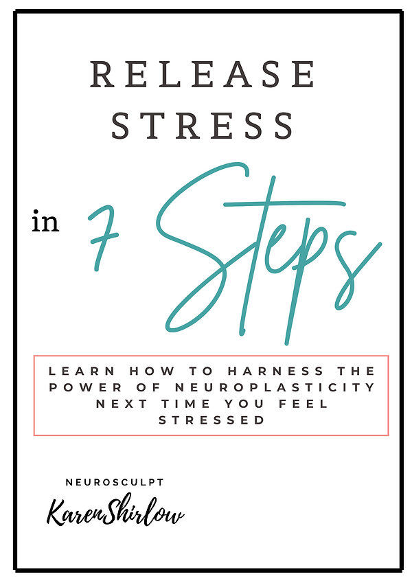 Release Stress 7 Steps Cover.png