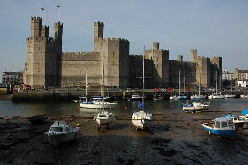 Caernarfon Castle Philip Halling 822633