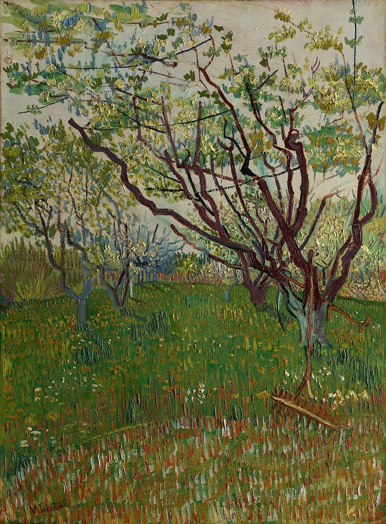 'The Flowering Orchard'