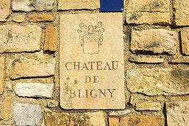 chateaubligny-1.jpg