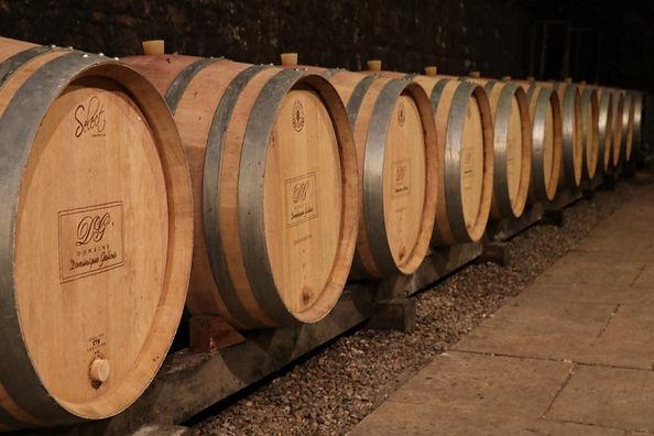 elevege-vin-cave-bourgogne-1024x683.jpeg