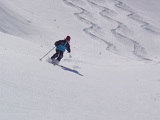 sciare in neve fresca