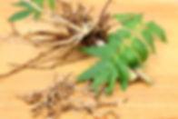 valerian-root.jpg