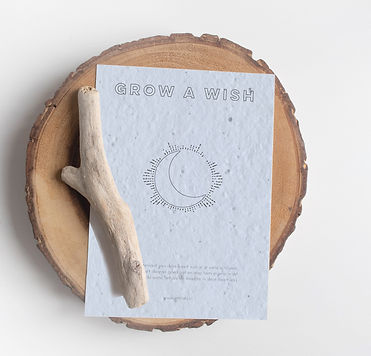 grow a wish MOON mock-up.jpg
