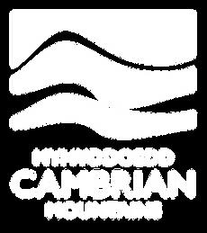 MCM Tourism Brand LOGO (WHITE).png