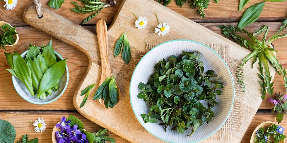 Domáca bylinková lekáreň