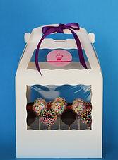 Cake Pop Gift Box.jpeg