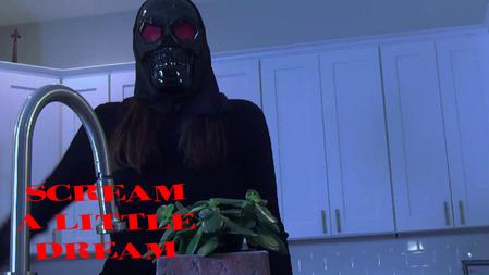 Scream A Little Dream