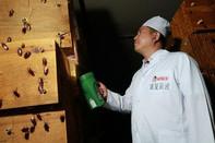 Millones de cucarachas trabajan triturando residuos alimenticios en China