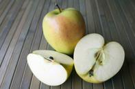 Científico hace crecer tejido humano en las manzanas