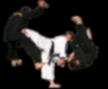 Combat Hapkido Jiu-Jitsu Monroe Georgia Mixed Martial Arts MMA