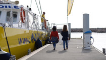 Sortie en catamaran avec Navivoile