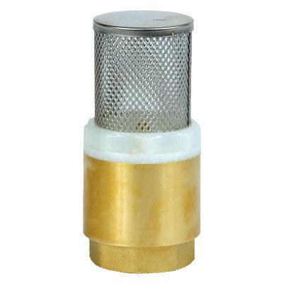 """Клапан обратный AquamotoR  1"""" с сеткой из латуни"""