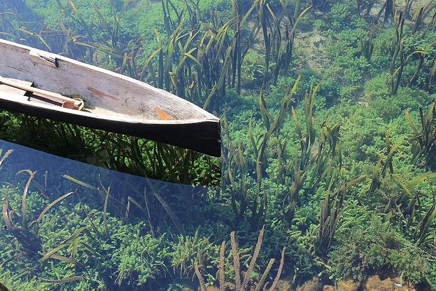 canoe-582659_1920.jpg
