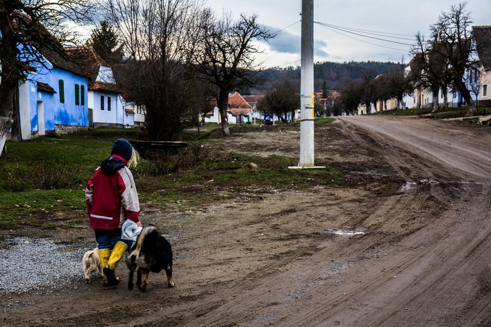 Transylvania (4).jpg