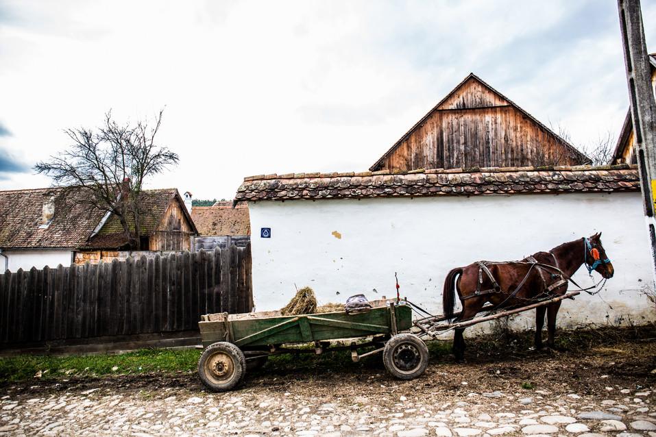 Transylvania (16).jpg