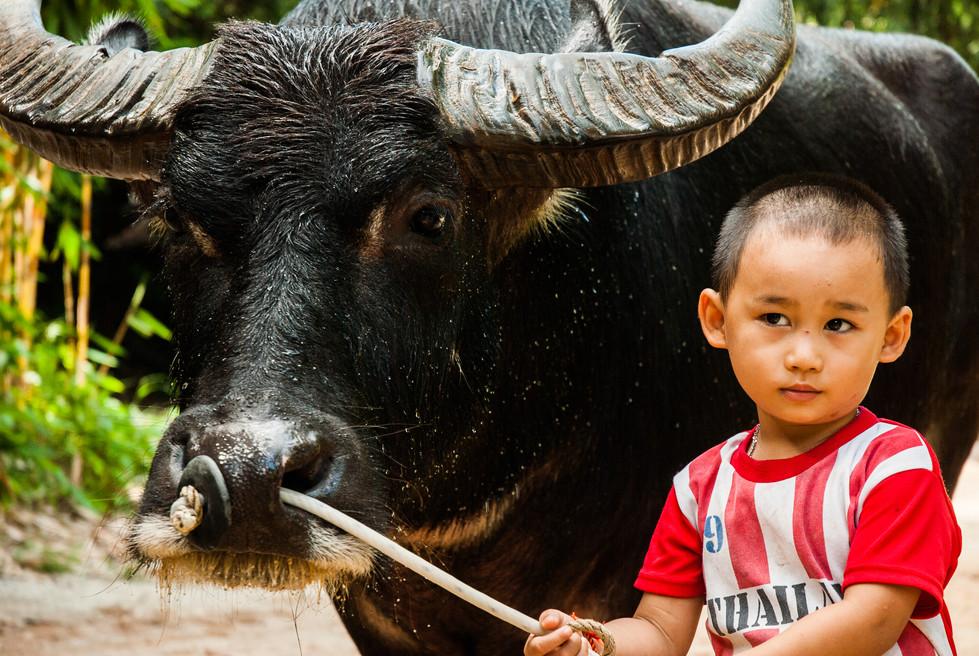 Thailand (13).jpg