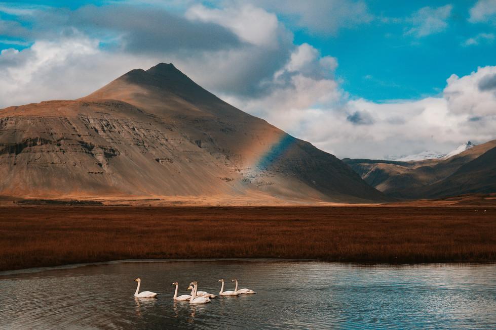 Iceland (1120).jpg