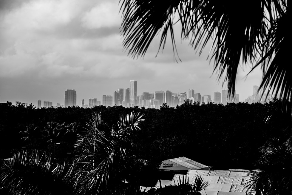 Florida (29).jpg