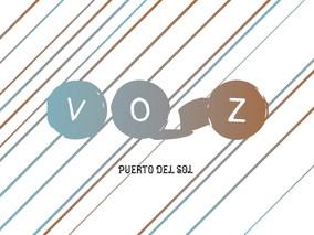 Submit to VOZ