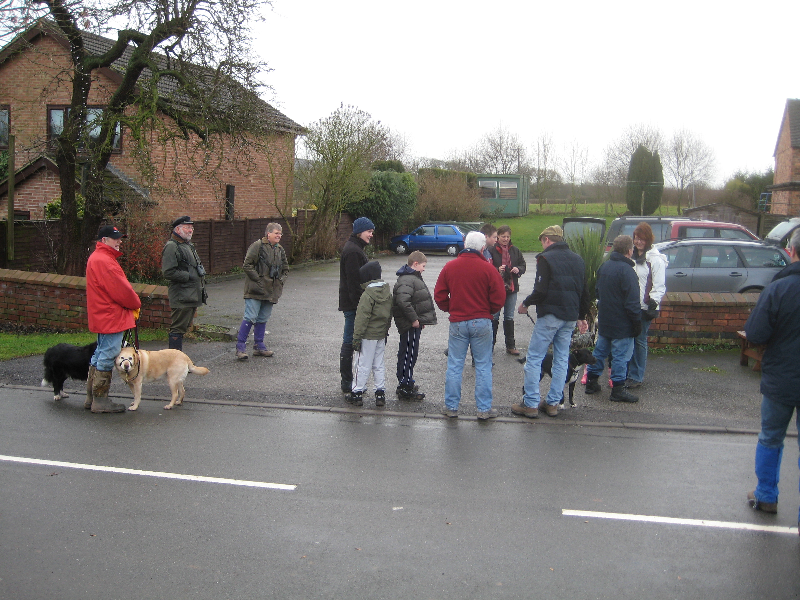 Preparing for a village dog walk