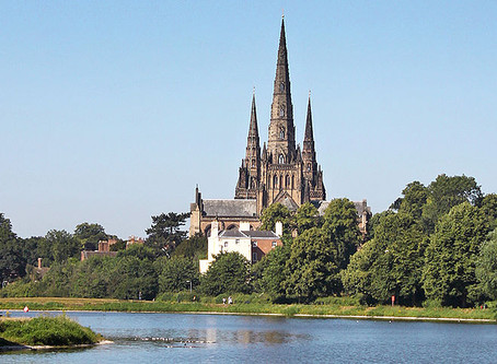Bluesky National Tree Map Helps Lichfield District Council Protect Trees