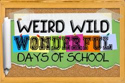 Weird Wild Wonderful Days of School