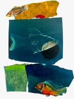 Fishy No. 1